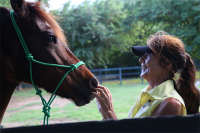Natural Horsemanship at Rainbows End St Lucia
