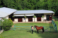Rainbows End Stables in St Lucia